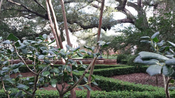 The gardens in the Garden District are well maintained.